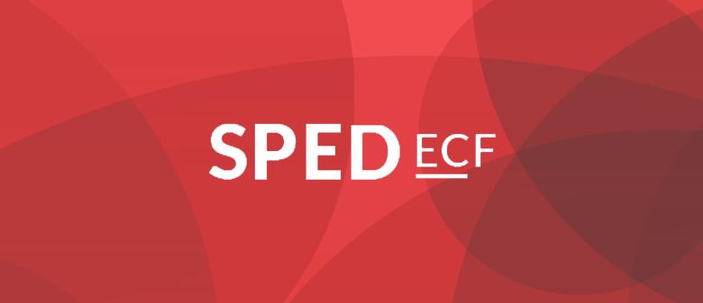 SPED ECF: Saiba como fazer o quadro societário e pagamentos dos sócios 1