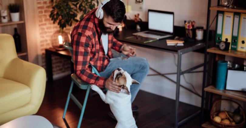 Imagem apresenta trabalho home office